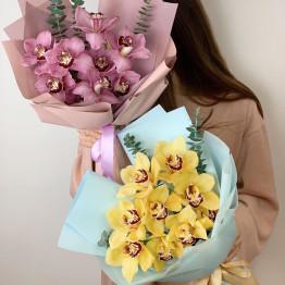 Моно букет орхидей