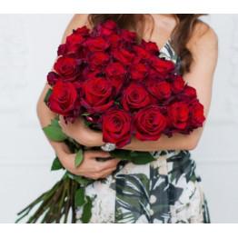 Розы красные Эксплоер 70-80 см