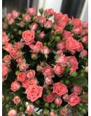 Кустовая розовая роза