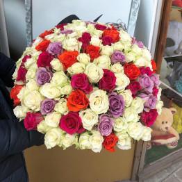 101 роза микс яркая