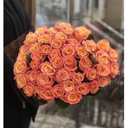 Розы Мисс пигги 60 см