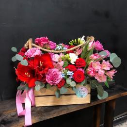 Цветочный ящик с амариллисом