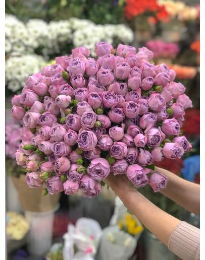 Блоссом баблз кустовая, пионовидная роза